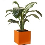 Orange Metal Planter Box Cube Large