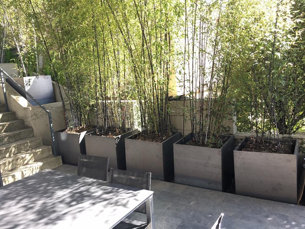 corten steel square planters bamboo california